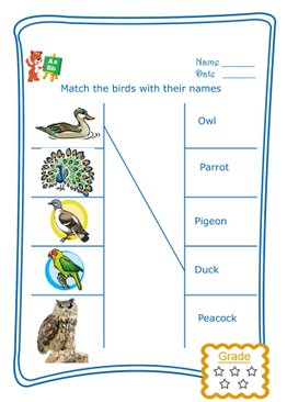 Match the Word - Birds