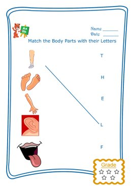 Match the Letter - Body Parts