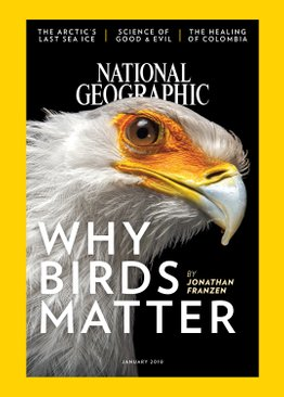 National Geographic Magazines Subscription