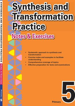 Primary 5 Synthesis and Transformation Practice