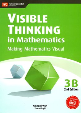 Visible Thinking in Maths 3B
