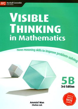 Visible Thinking in Maths 5B