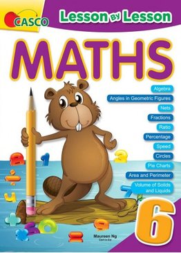Lesson By Lesson Maths Primary 6
