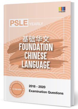 PSLE Foundation Chinese Yearly Qns + Ans 2018-2020