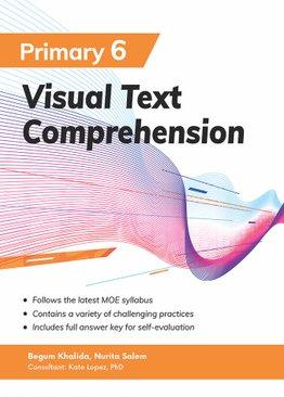 Visual Text Comprehension P6