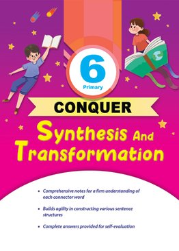 P6 Conquer Synthesis and Transformation
