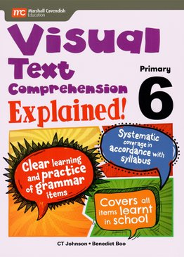 Visual Text Comprehension Explained! P6