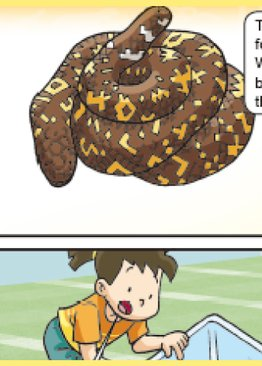 World Of Science Comics: Adventures with Reptiles and Amphibians